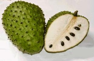 fruit and soursop leaves to treat cancer