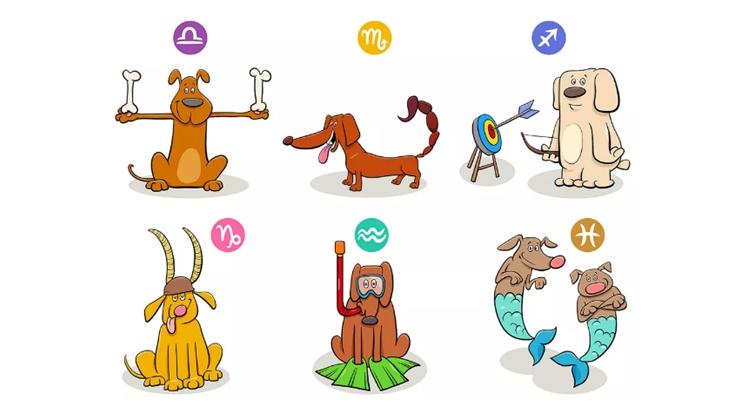 Собачий гороскоп по дате рождения