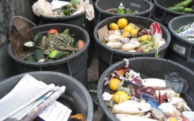 Aún hay hambre en el mundo, pero seguimos desperdiciando la comida