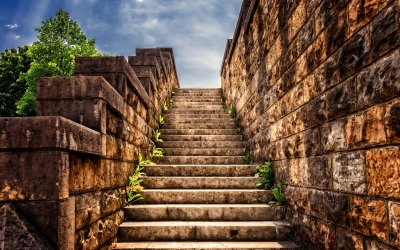21 Escalones para tu equilibrio emocional
