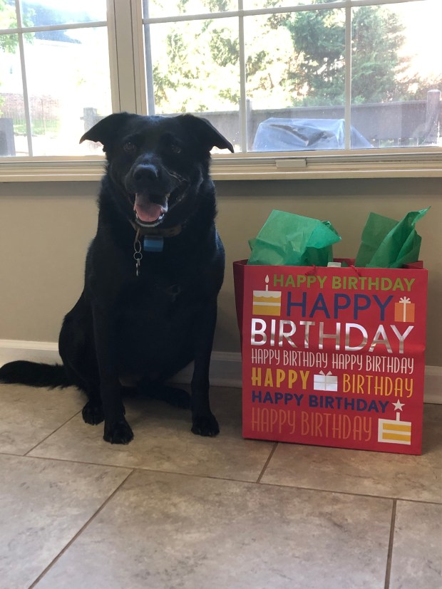 Chance and his birthday gifts