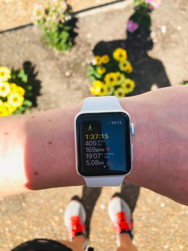 5 mile walk stats