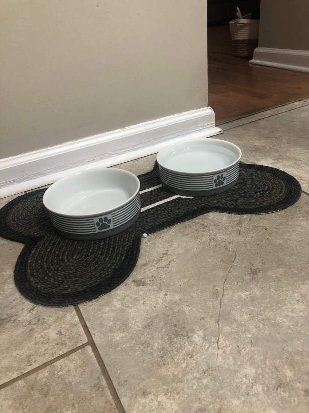 Clean dog bowls and mat