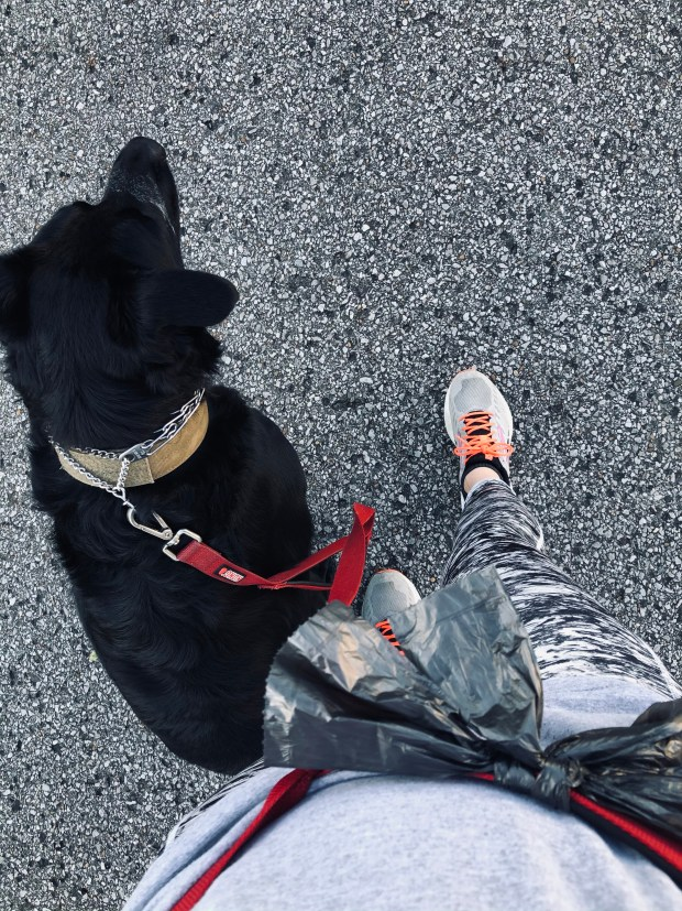 Walking with Chance