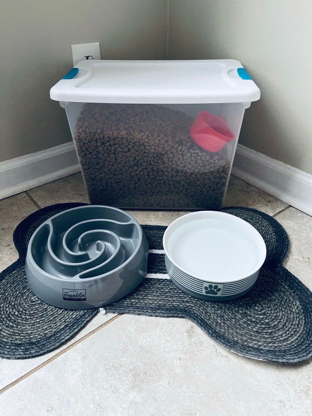Chance's bowl set up