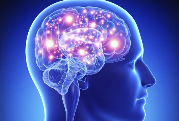 Neuroplasticidade - Cérebro