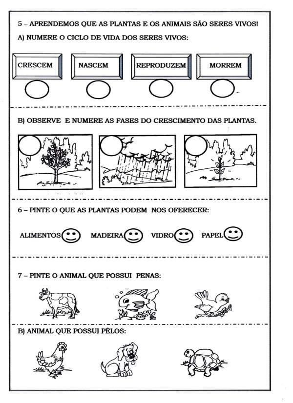 Avaliação História Geografia e Ciências-Parte 03. Avaliação - Animais e Plantas.
