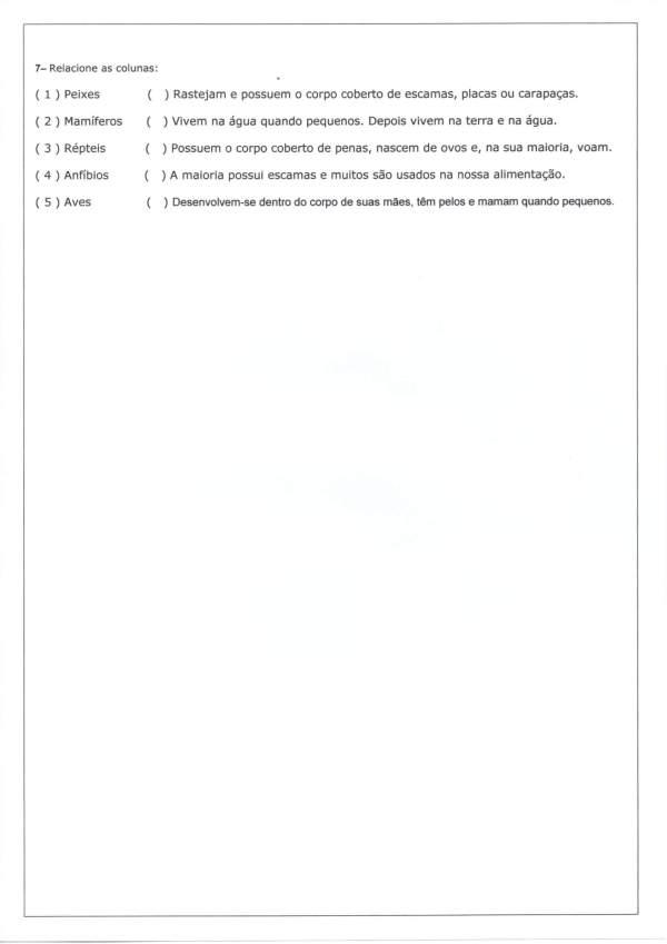 Avaliação de Ciências 4 Ano-Mamíferos Peixes Anfíbios-Folha 4