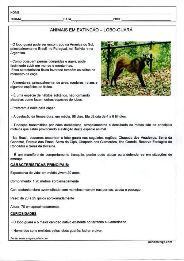 Ficha Técnica-Lobo Guará-Parte 1-Interpretação de Texto-Folha 1