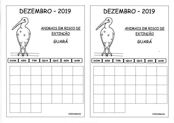 Calendário 2019 Dezembro-Aluno