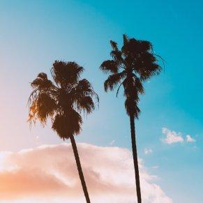 California 2022 (3)
