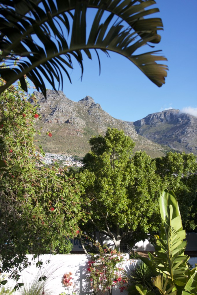 south-africa-12-16-117