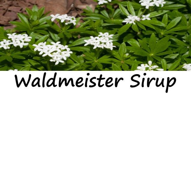 Waldmeister Sirup 250ml