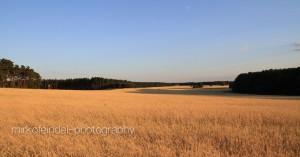 Landschaft-11