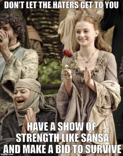Sansa Stark Memes : sansa, stark, memes, Lessons, Sansa, Stark, Boss!, Madhu, Sandya, Medium