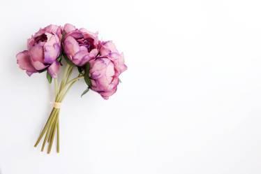 Risultato immagini per flowers