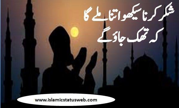 Some happy muharram wishes, muharram quotes, and muharram whatsapp status options are: Islamic Quotes For Whatsapp Status Calming Quotes