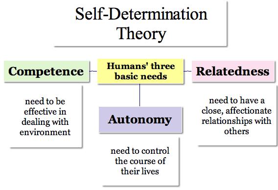 Psychological Needs Relatedness