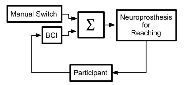 Brain-Computer Interface (BCI) systems and Functional