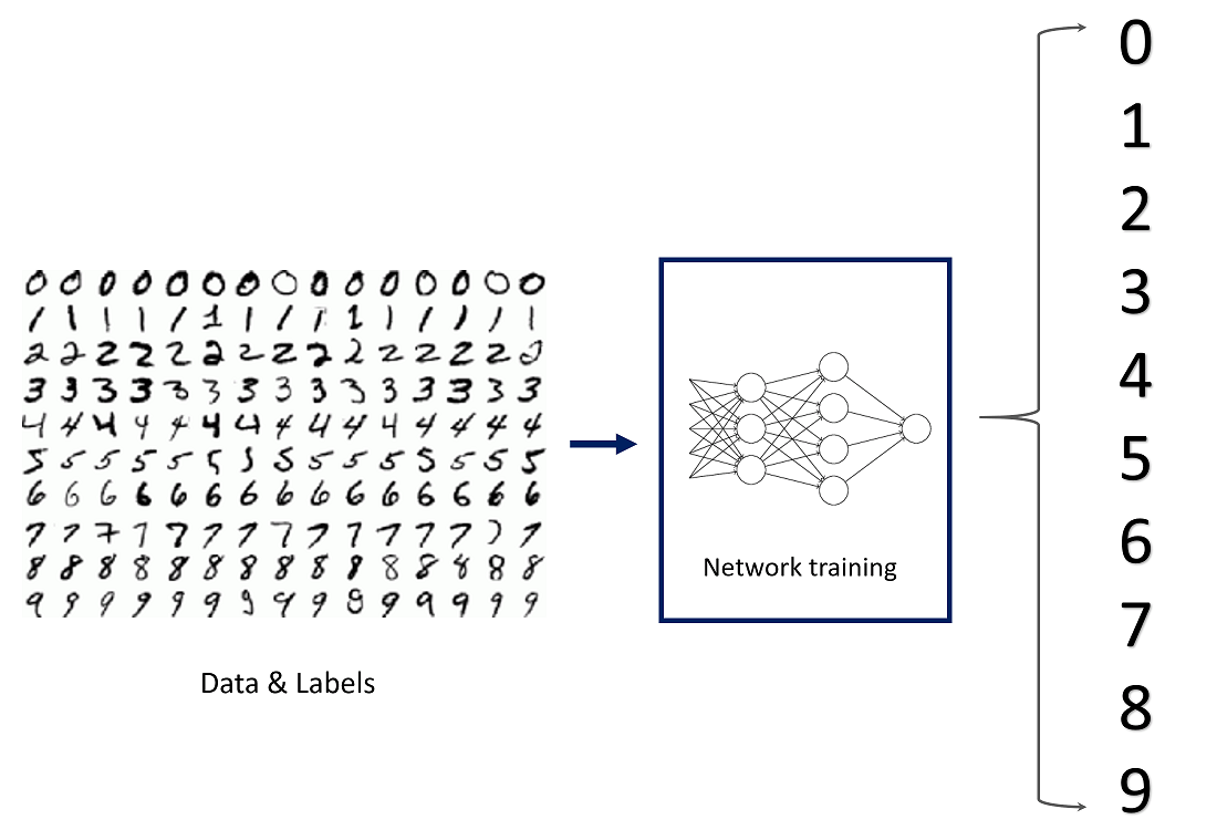 Beginner's Guide to Building Neural Networks in TensorFlow