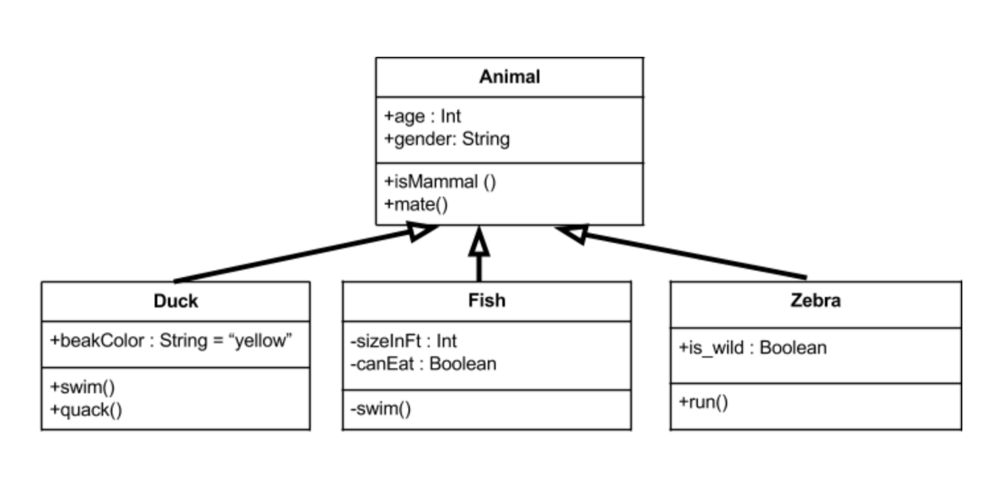 hight resolution of above we have an animal parent class with all public member fields you can see the arrows originating from the duck fish and zebra child classes which
