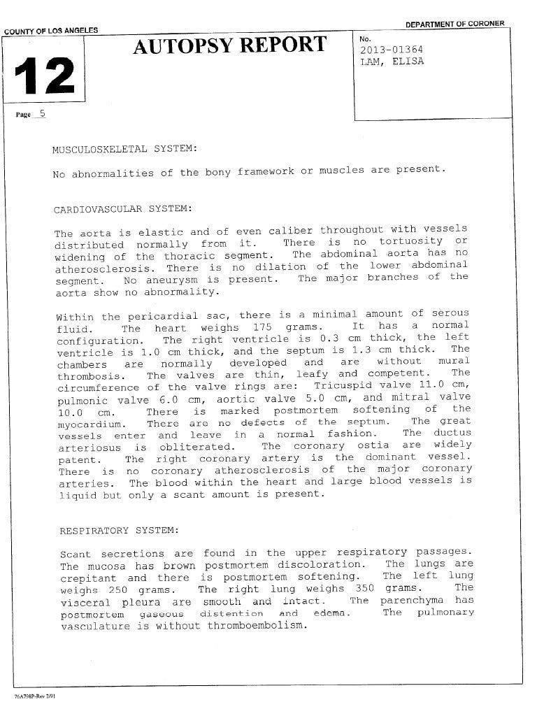 Elisa Lam S Autopsy Report Josh Dean Medium