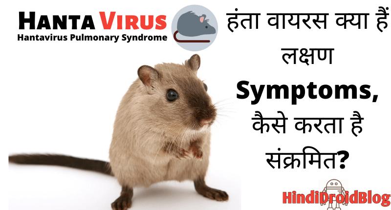 Hantavirus 2020: हंता वायरस क्या हैं ...