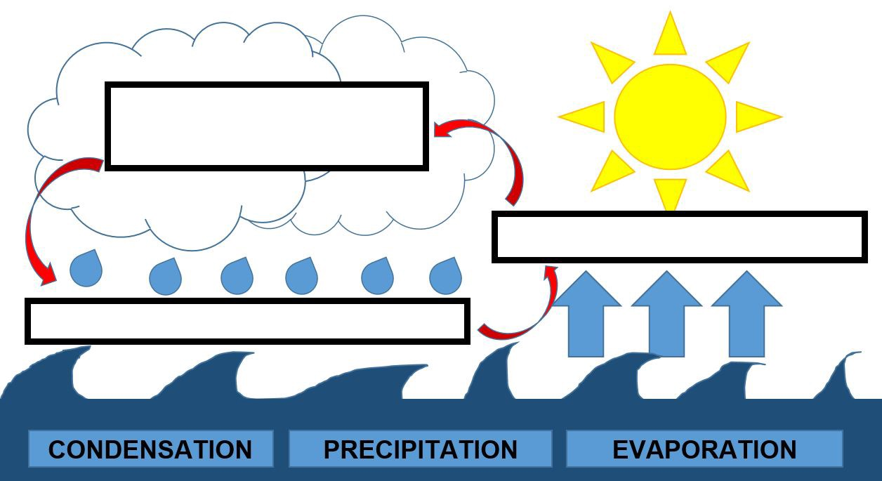 hight resolution of Mini Lesson Plan: The Water Cycle   by LittleLives   LittleLives