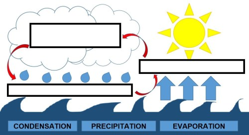 small resolution of Mini Lesson Plan: The Water Cycle   by LittleLives   LittleLives