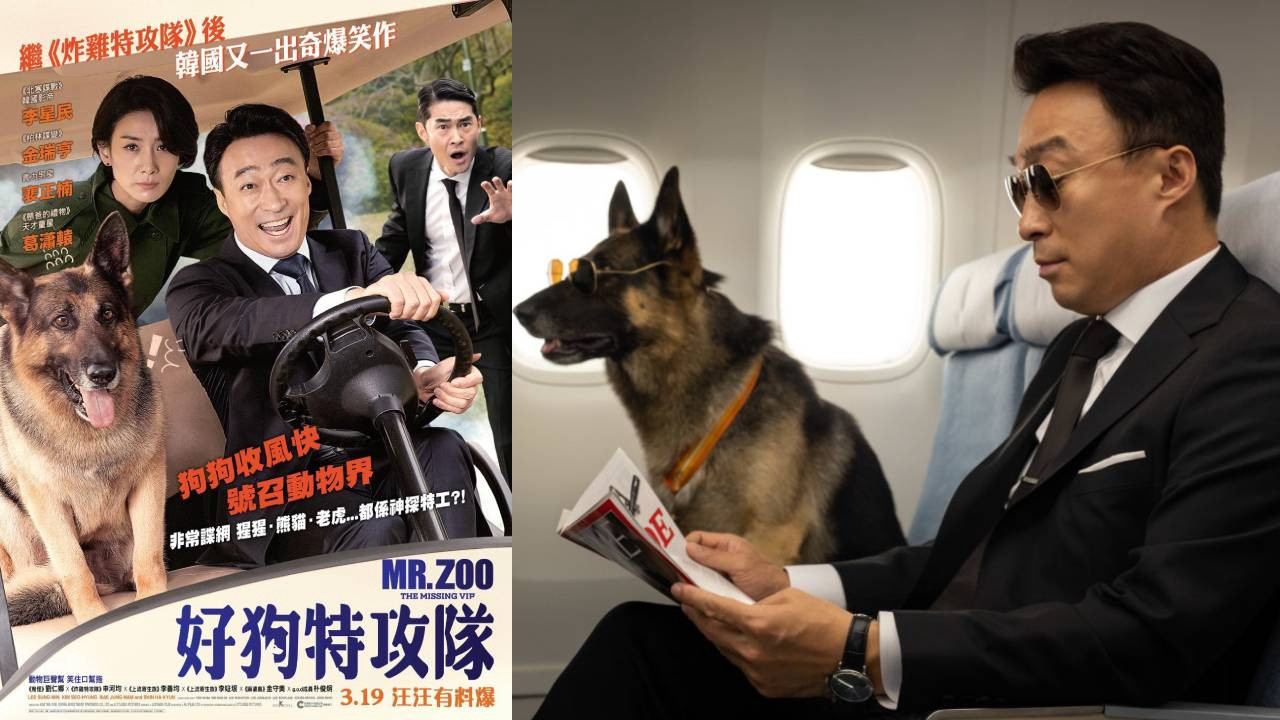 《好狗特攻隊》(Mr. Zoo: The Missing VIP)  把熊貓寵壞。 - Movie Buddies 電影筆友 - Medium