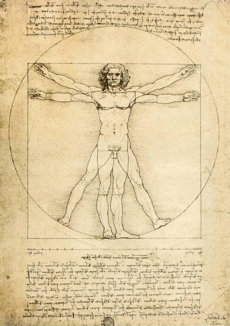 L'Homme de Vitruve — Léonard De Vinci 1490