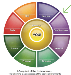 the diagram above is from jim bunch s company the ultimate game of life i was initially introduced to the idea that our life is made up of environments  [ 1298 x 1298 Pixel ]