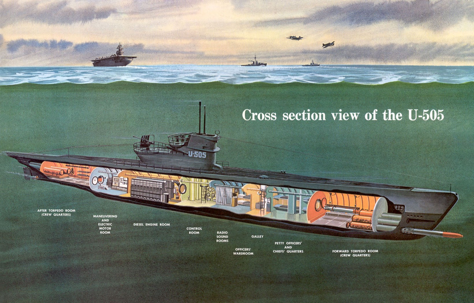 hight resolution of cross section view of u 505 us navy