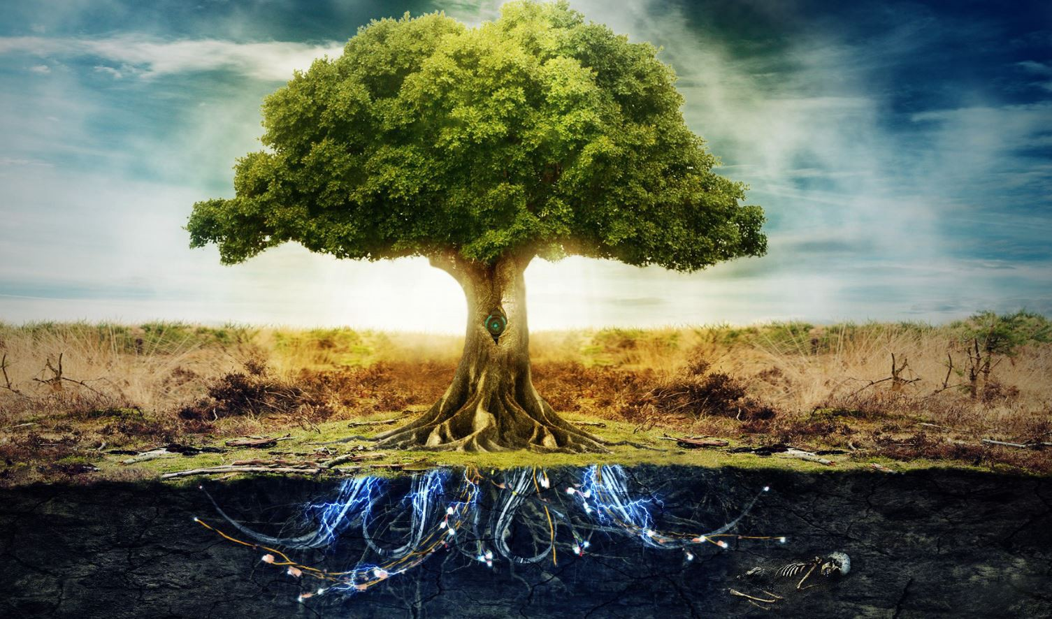 The Garden Of Eden On The Philosophy Of Good And Evil By Nuworlds Medium
