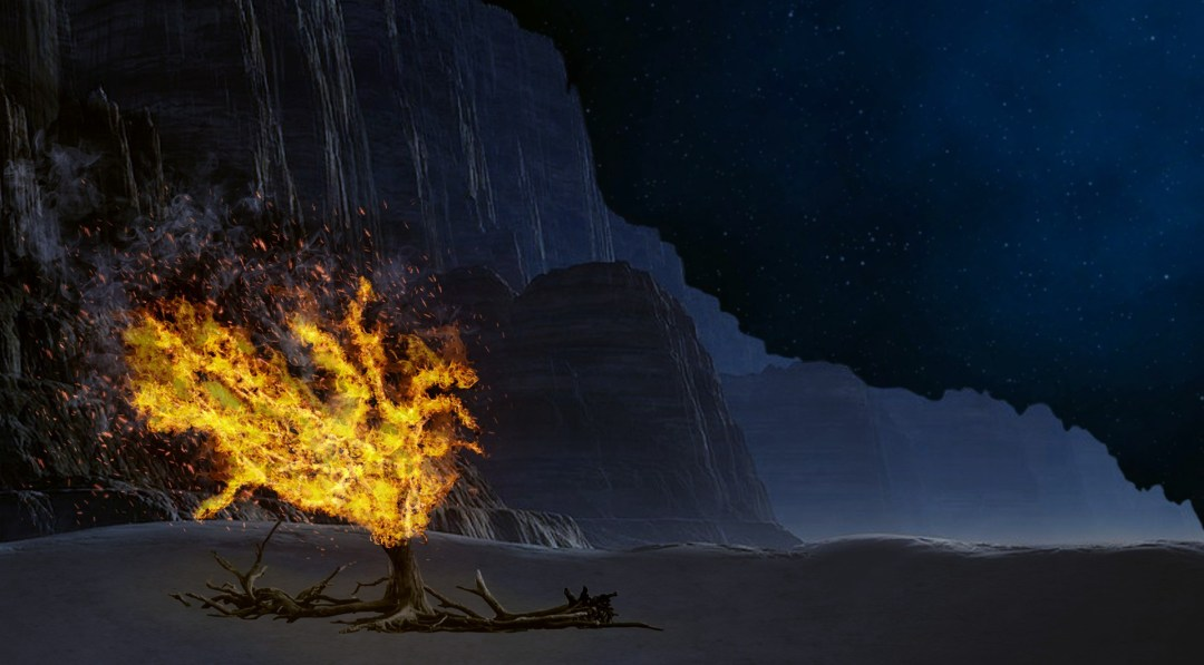 Don't Wait for a Burning Bush. How to find the true God   by Marcia Laycock    Koinonia   Medium