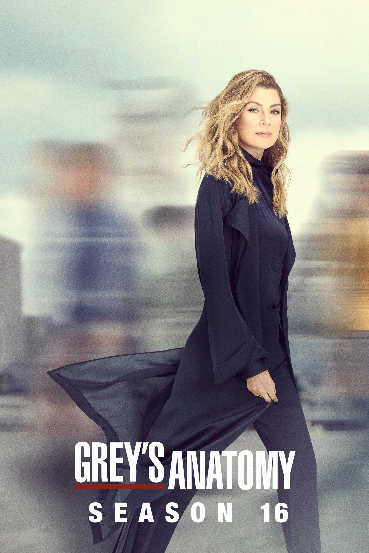 Grey's Anatomy Saison 9 diffusion en VOST en streaming
