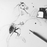 Drawing A Appaloosa Horse With Ink By Caroline Towning Medium