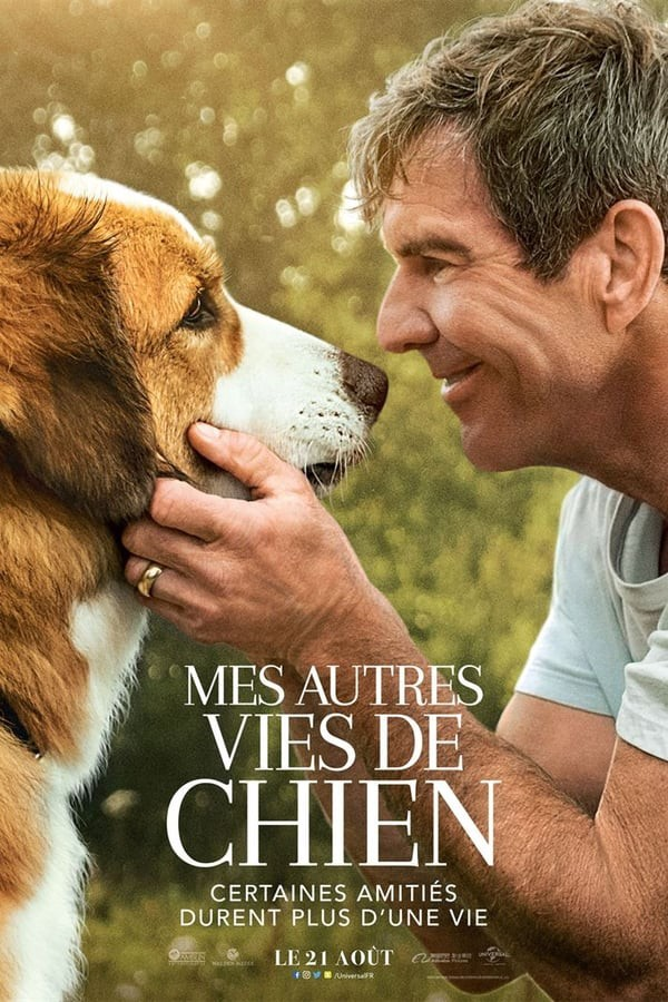 Mes Vies De Chien Streaming Complet Vf - Vfstreaming.run