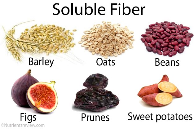 Global Soluble Dietary Fibre Market 2018–2024 Demand and Insights ...