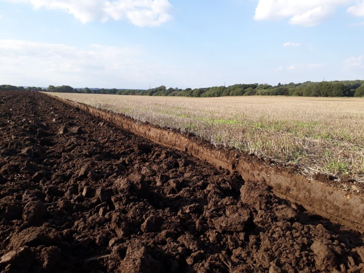 A field of two halves showing the difference between leaving stubble and ploughing.