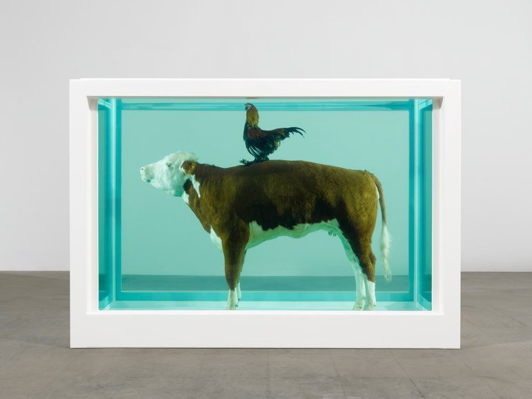 Is it ethical to use animals in art?