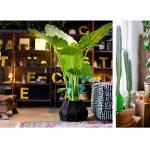 How To Use Plants In The Interior By Anna Samygina Basics Of Interior Design Medium