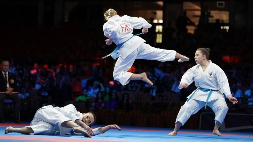 Картинки по запросу ekf karate