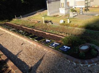 ミニ個別墓 花の植え替え
