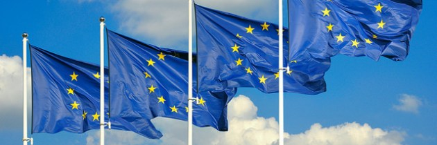 The 5th EU-Africa Summit – Europe's Perspective