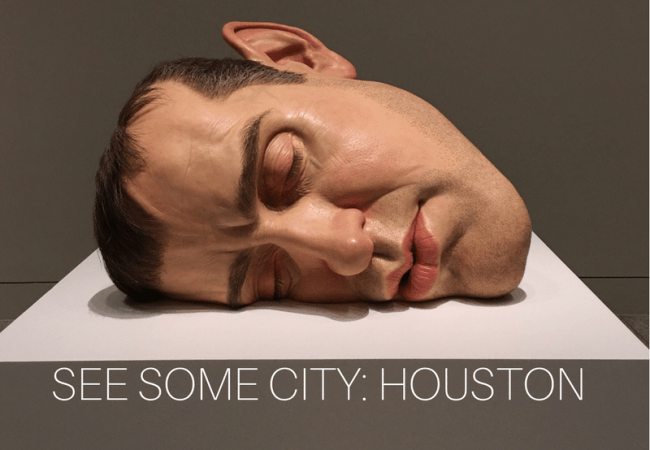 See Some City: Museum of Fine Arts, Houston