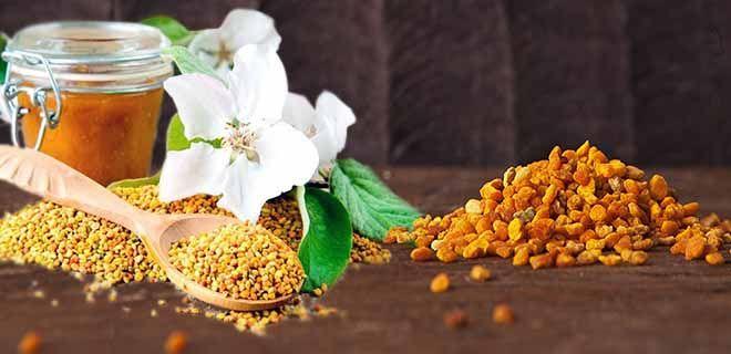Recept a méhek a prostatitisből kurkuma a prosztatitis recept ellen