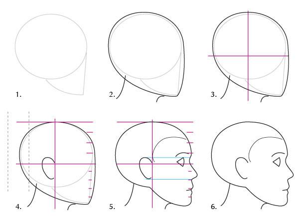 Scheman och ansiktsproportioner