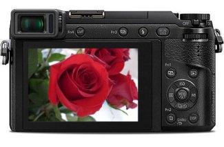 gx85-rose