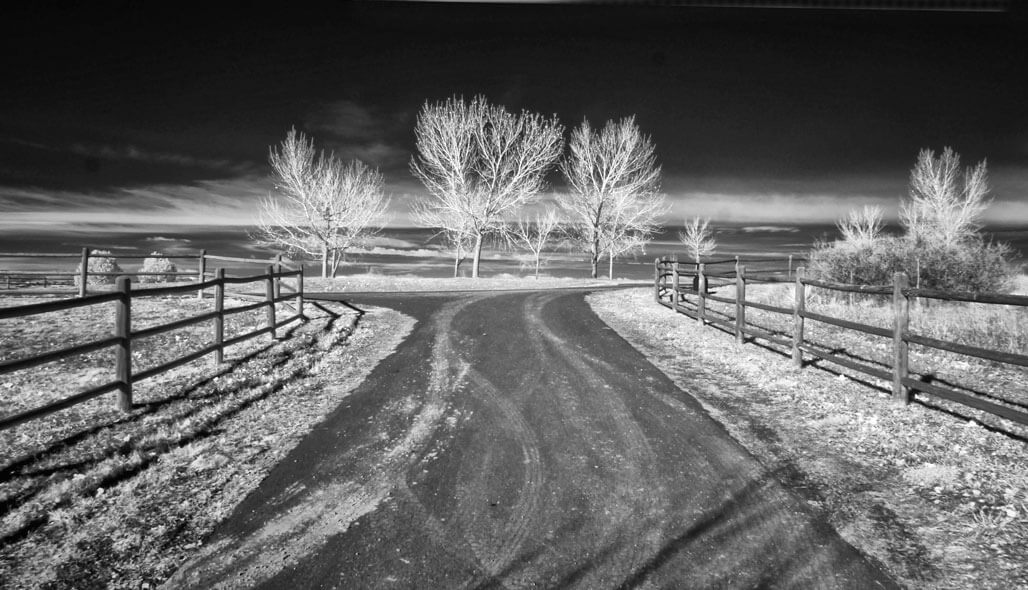 Visualizing Infrared Photographs